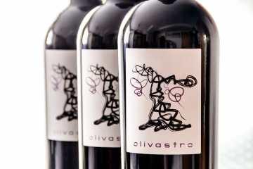 Olivastro vino bodega Carres Requena