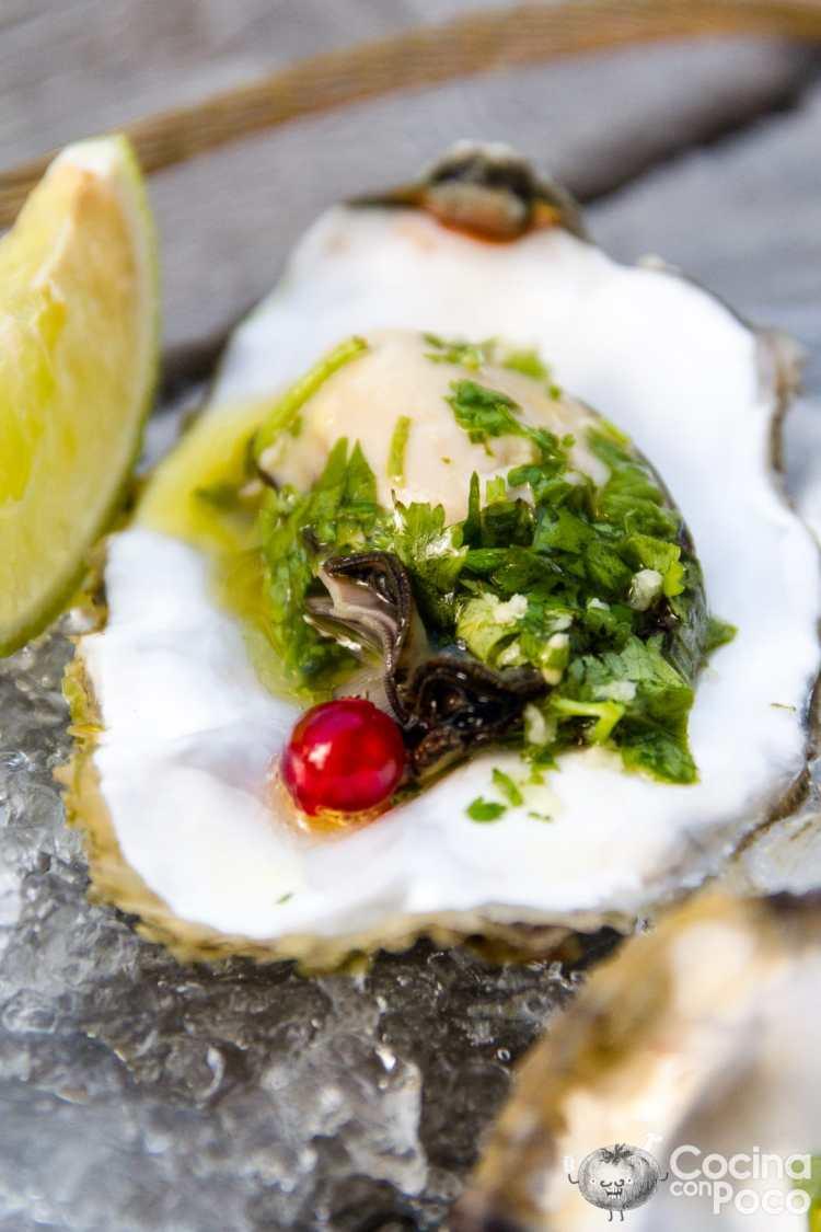 Ostras al vapor como prepararlas y cocinarlas cocina - Como cocinar ostras ...