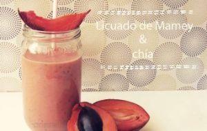 Licuado Antioxidante contra la Gastritis: Bebida de Mamey con Chía