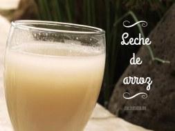 Cómo hacer Leche de Arroz casera. Aprende a preparar leches vegetales