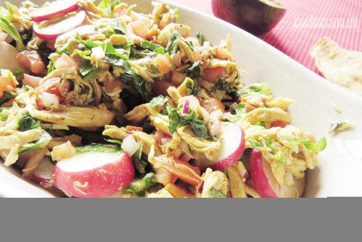 Salpic´n de pollo con vegetalas rabano zanahoria y cebolla morada