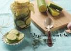 Cómo hacer Pepinos Encurtidos o Pepinillos en casa