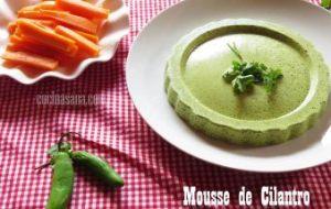Mousse de Cilantro como entrante o aperitivo. Recetas de Entremeses
