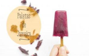 Paletas Heladas o Polos de Flor de Jamaica. Receta sana y refrescante