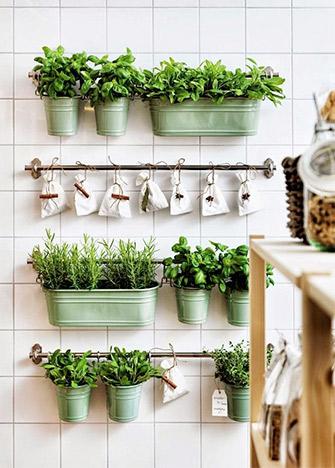 mini-huerto-cocina-cuebtas