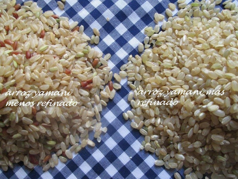 arroz-yamaniii