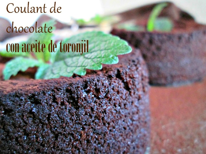 MINI_GATEAU_DE_CHOCOLATE_IMG_4114RRR