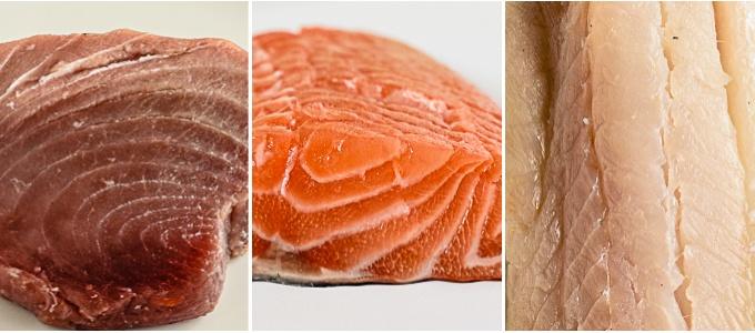 different types of fish flesh