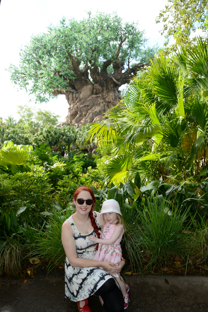 Cocktails in Teacups Florida Holiday April 2015 Day 5 DAK Tree of Life Photo Pass