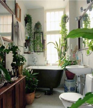 Inspiration Dco Des Plantes Vertes Dans La Salle De