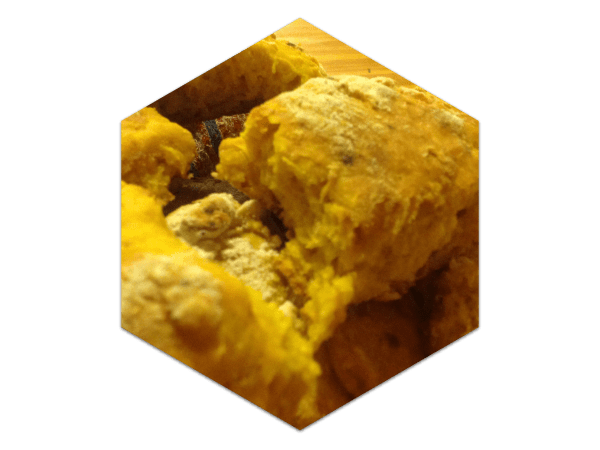 Pumpkin Scones with Coconut Oil - surprisingly fluffy and rose well