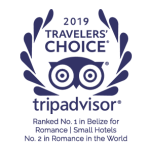 TripAdvisor 2019 Traveler's Choice Award