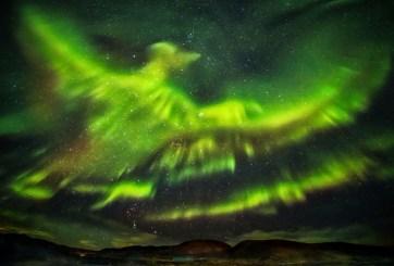 Phoenix Aurora Borealis