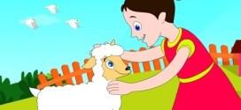 Mary Had  A Little Lamb İngilizce Çocuk Şarkısı
