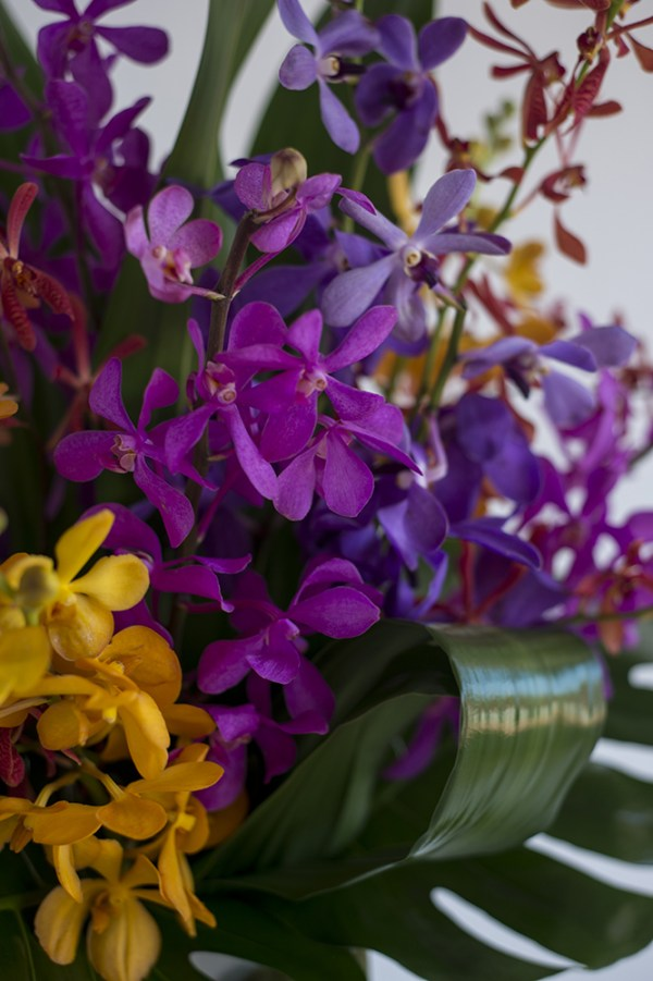 Orchid Vase Close Up