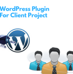 WordPress Plugin for Client project