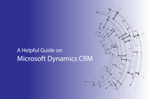 A helpful Guide on Dynamics CRM