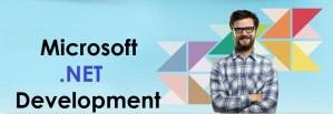 .Net development company India