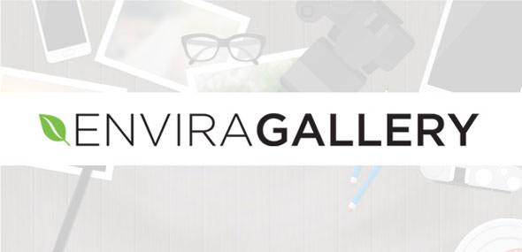 Envira Gallery v1.9.2.2 + Addons