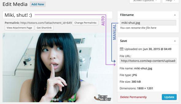 Media File Renamer Pro v4.6.2