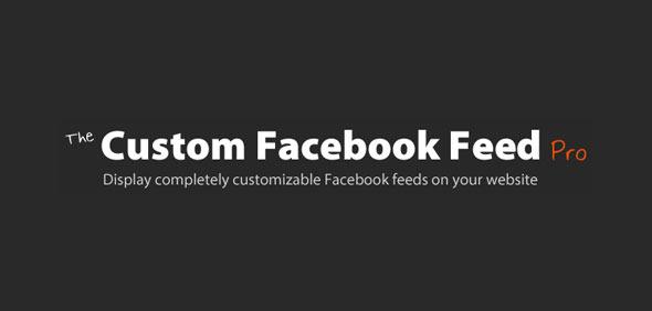 Custom Facebook Feed Pro v3.5.1