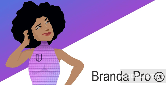 Branda Pro v3.3.2 - WordPress white label branding