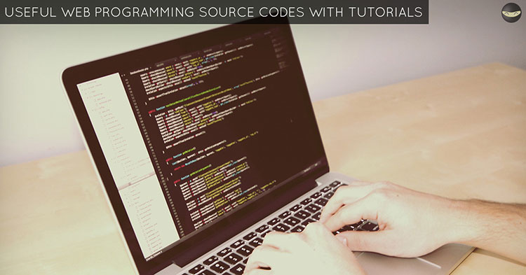 web-programming-source-codes-with-tutorials