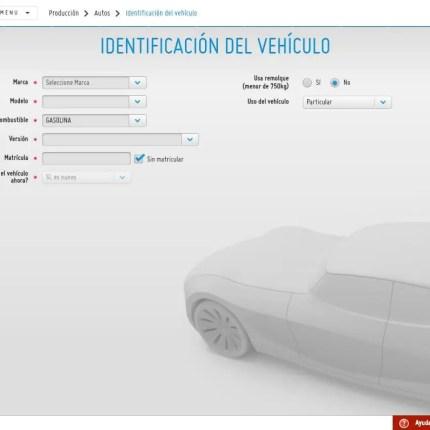 Identificación del Vehículo