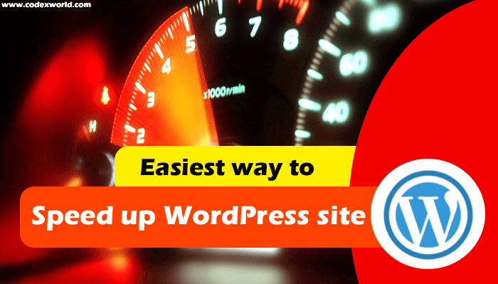 speed-up-wordpress-site-instantly-tutorial-by-codexworld