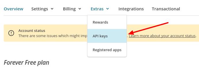 custom-subscription-form-mailchimp-api-php-extras-api-keys-codexworld
