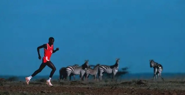 Courir longtemps est le propre de l'homme