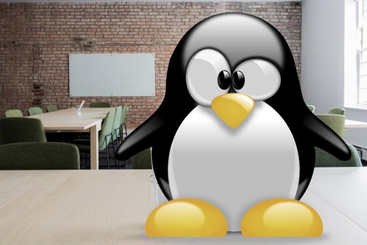 Comandos más utilizados de Linux