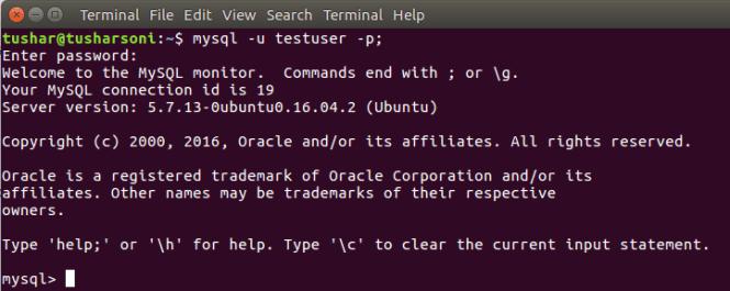 Execute MySQL Client in Ubuntu