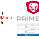 PrimeNg DataTable - Coding Faster