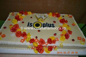 Tort aniversar ISO Plus Oradea