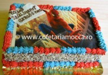 tort cu poza spiderman