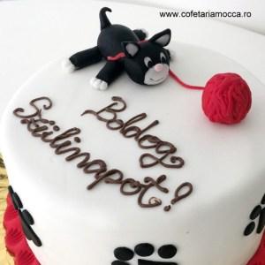 tort aniversar cu pisicuta (1)