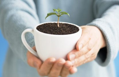 10 awesome uses for old coffee beans coffee brew guides - How to use coffee grounds in garden ...