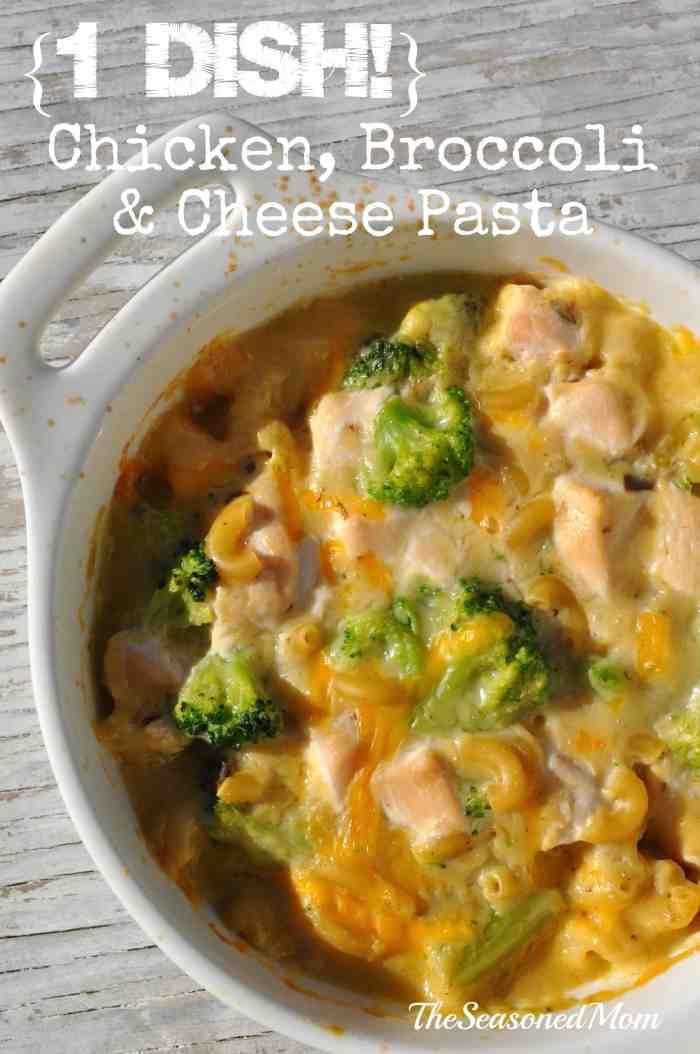 1 Dish Chicken Broccoli and Cheese Pasta