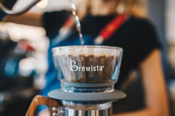 brewista flat dripper