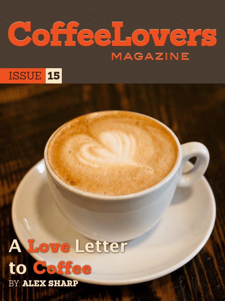 Issue 15 – February