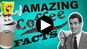 10 Crazy Coffee Facts (10 Crazy Coffee Facts)