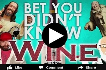 9 Things You Did Not Know About Wine