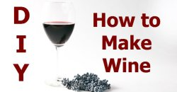 How to Make Wine