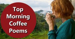 Top Morning Coffee Poemsfor Any Coffee Lover to Enjoy