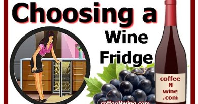 Choosing a Wine Fridge
