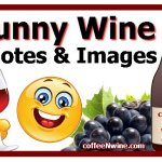 Funny Wine Quotes Images to Share On Social Media
