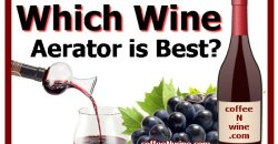 Which Wine Aerator is Best?