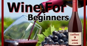 Wine For Beginners