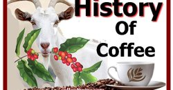 History of Coffee   Coffee Documentary
